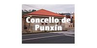 punxin